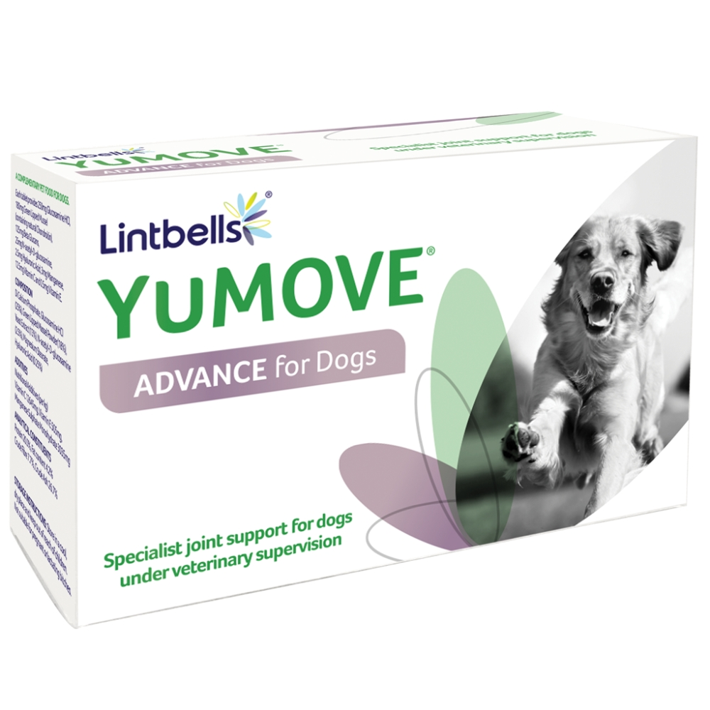 YuMOVE Advance Dog supplement by Lintbells