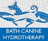 Bath Hydrotherapy and Physiotherapy for Dogs