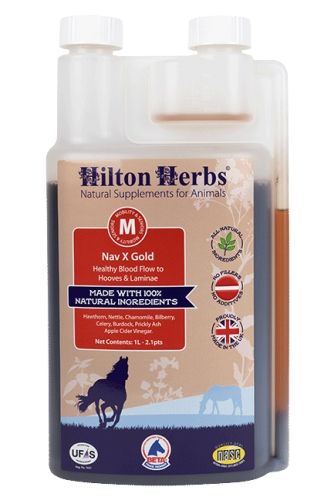 HILTON HERBS - Nav X Gold 1 Litre Bottle