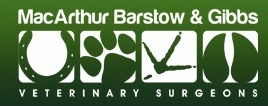 Macarthur Barstow & Gibbs - Droitwich Veterinary Surgery - Ophthalmology