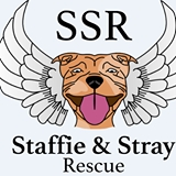 Staffie and Stray Rescue - Dorset