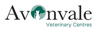 Hydrotherapy - Avonvale Veterinary Centres - Wellesbourne