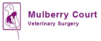 Mulberry Court Vets in Sudbury Suffolk - Dental Oral Referrals