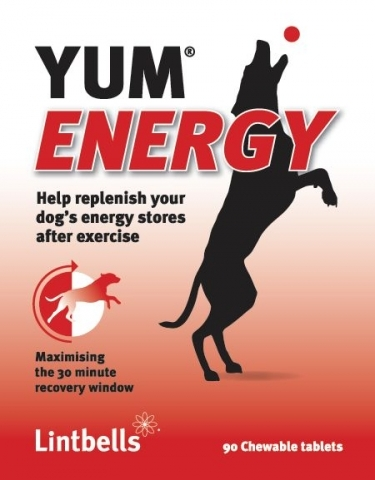YUM energy supplement for dogs by Lintbells