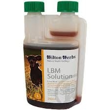 HILTON HERBS Canine LBM Solution 250ml Bottle