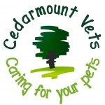 Cedarmount Vets in Bangor - Physiotherapy