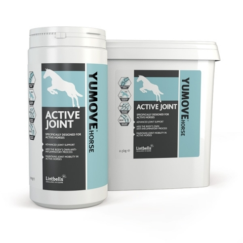 YUMOVE horse ACTIVE supplement by Lintbells